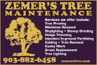 Website for Zemer's Tree Maintenance