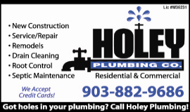 Website for Holey Plumbing Company, Inc.