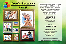 Website for The Copeland Group