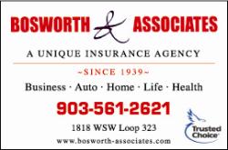 Website for Bosworth & Associates Inc.