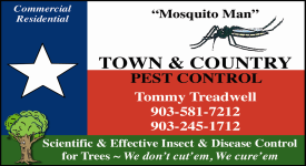 Website for Town & Country Pest Control
