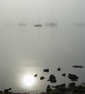 Harbor-fog-1-ws1_medium