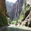 Zion_narrows_june_9__2006_071_thumb