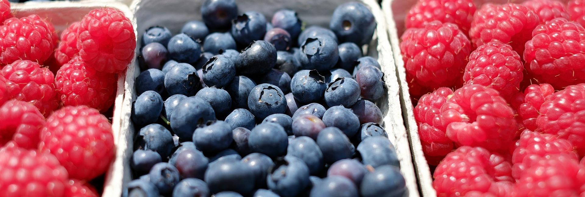 Berries 1493905 1920