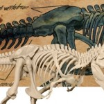 Imprime y arma tu propio Tiranosaurio Rex