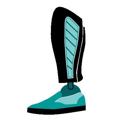 Cubiertas para prótesis de pierna, rodilla protésicas o prótesis transtibiales.