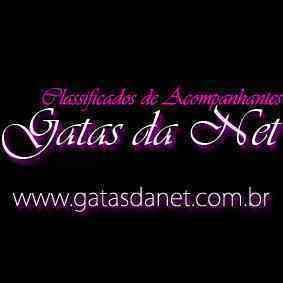 GatasDaNet.com.br
