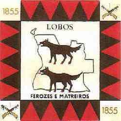 B.C.1855