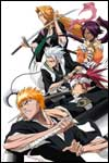 The Bleach anime TV show is coming to the Nintendo DS and Nintendo Wii with Bleach: Shattered Blade and Bleach: The Blade of Fate from SEGA