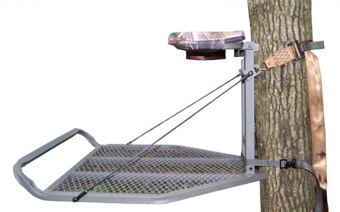 Advice About Tree Stands Used On Public Land
