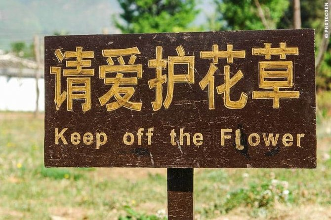 Signboards in China