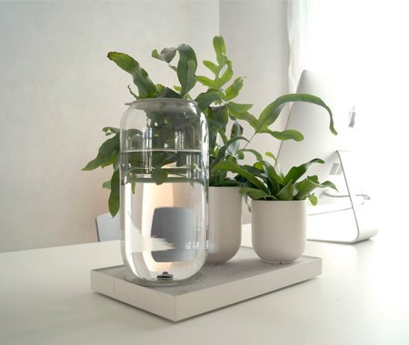 Smarter Ways To Water Your Plants