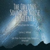 The Obvious Sound of Noise is Silence - Now on Amazon