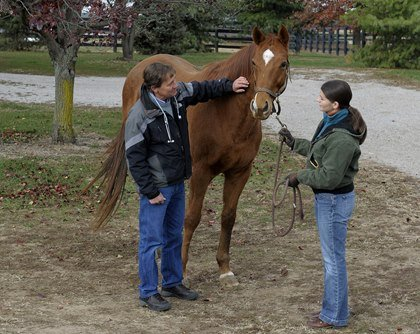 Own a Horse Without Emptying Your Wallet