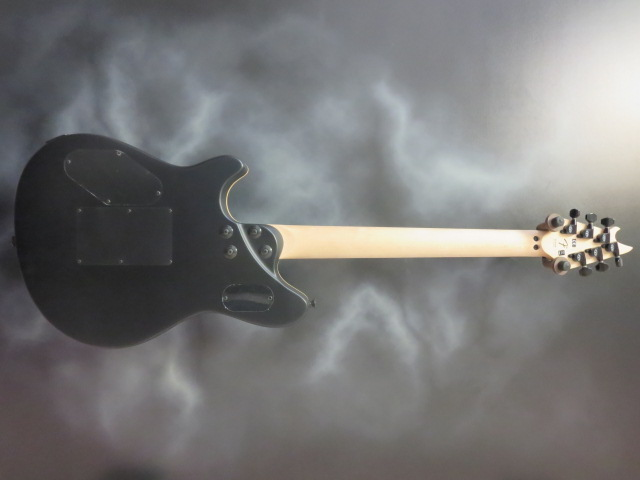 EVH - Wolfgang Special Stealth