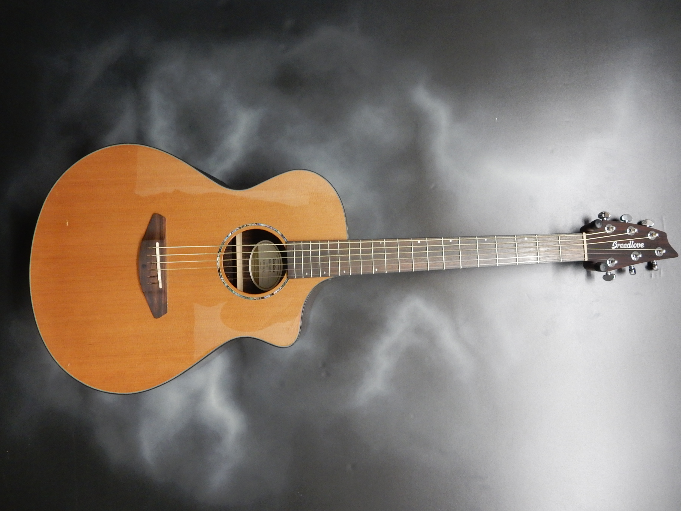 Breedlove - Solo Concert Acoustic/Electric
