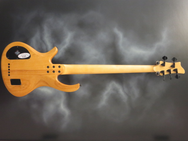 Schecter - Riot-5 Session