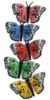 BUTTERFLY ASSORTED 2½ INCH BUTTERFLIES  QTY 12