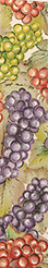 GRAPES (1-3/8 IN X 20 YDS)  QTY 1