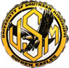 SOUTHERN MISS GOLDEN EAGLES (18in.) QTY 5