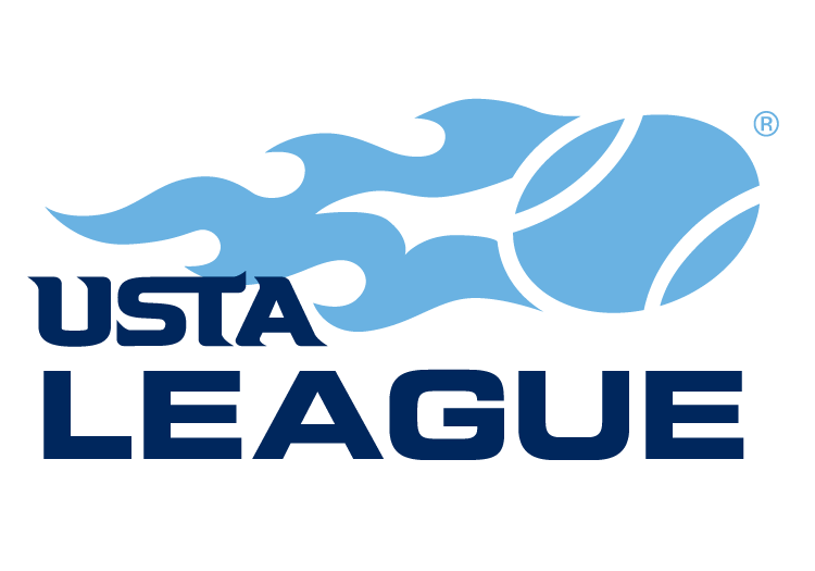 Image result for usta logo