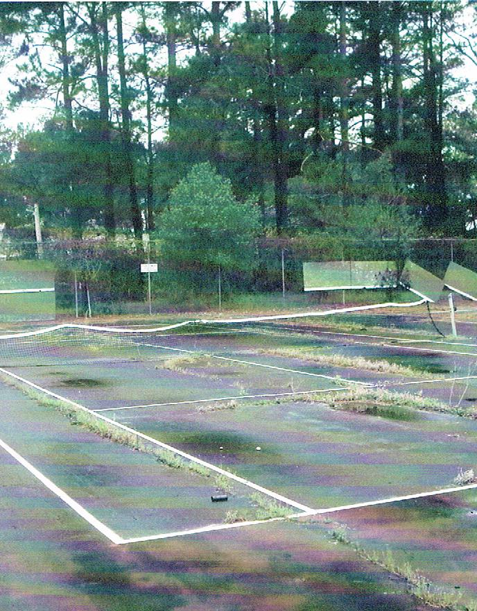 picture -tennis court old