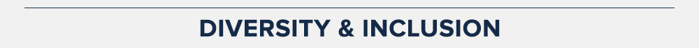 diversity-title-top-gray-bar