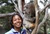 Moulton-Levy-koala