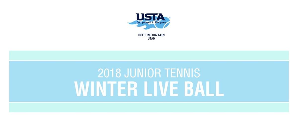 2018_Winter_Live_Ball_Banner