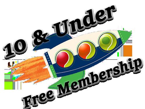 Rocket_10U_Free