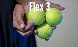 Flex_3_cropped