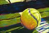 Tennis-Ball-NetTHUMB