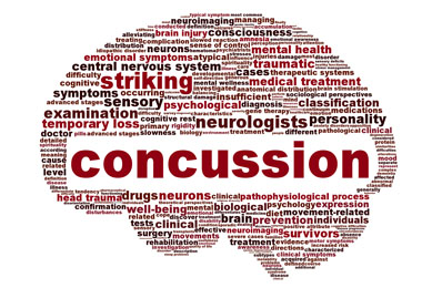 Concussions2_389x