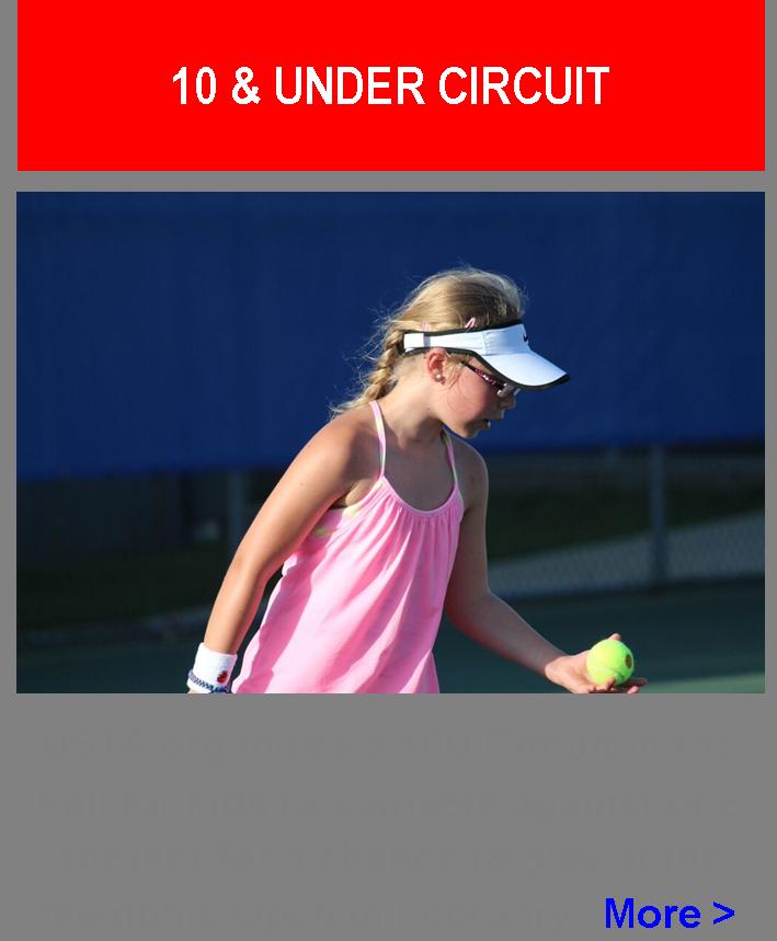 10U_Circuit