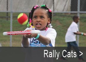 Rally_Cats