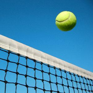 tennis_ball_net