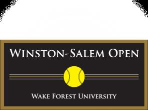 site-logo-wso