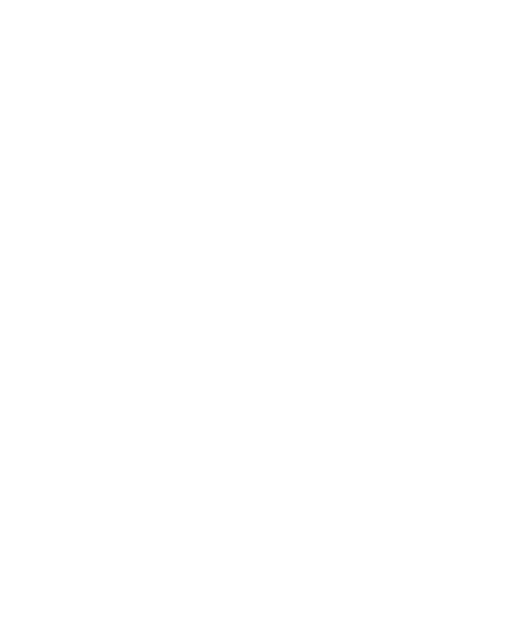 RaiseaRacquetFoundation_Logo_white_181107
