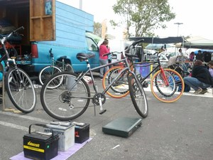 San francisco laney college flea market nereocystis