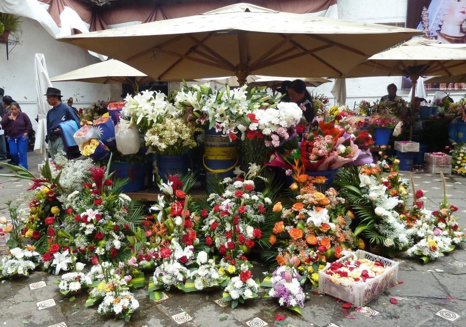 Ecuador july 2012 095 e1438738772779