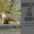 Howling_at_the_moon