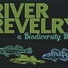 River_rev_325