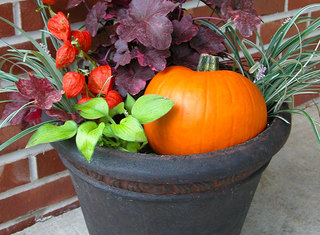 Fall-containers-south-central-1