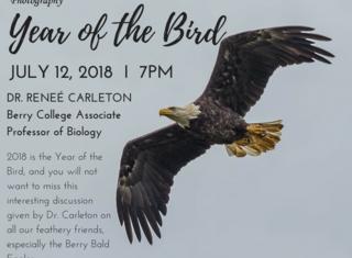 Year_of_the_bird