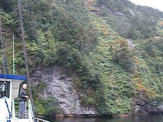At Doubtful Sound