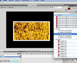 Curso vídeo Flash. Carga externa (Parte 5)