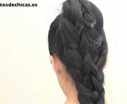 Curso vdeo Peinados de coleta con trenzas. Peluquera