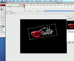 Curso vídeo Vídeo-tutorial Flash CS4. Trucos: suavizar imágenes