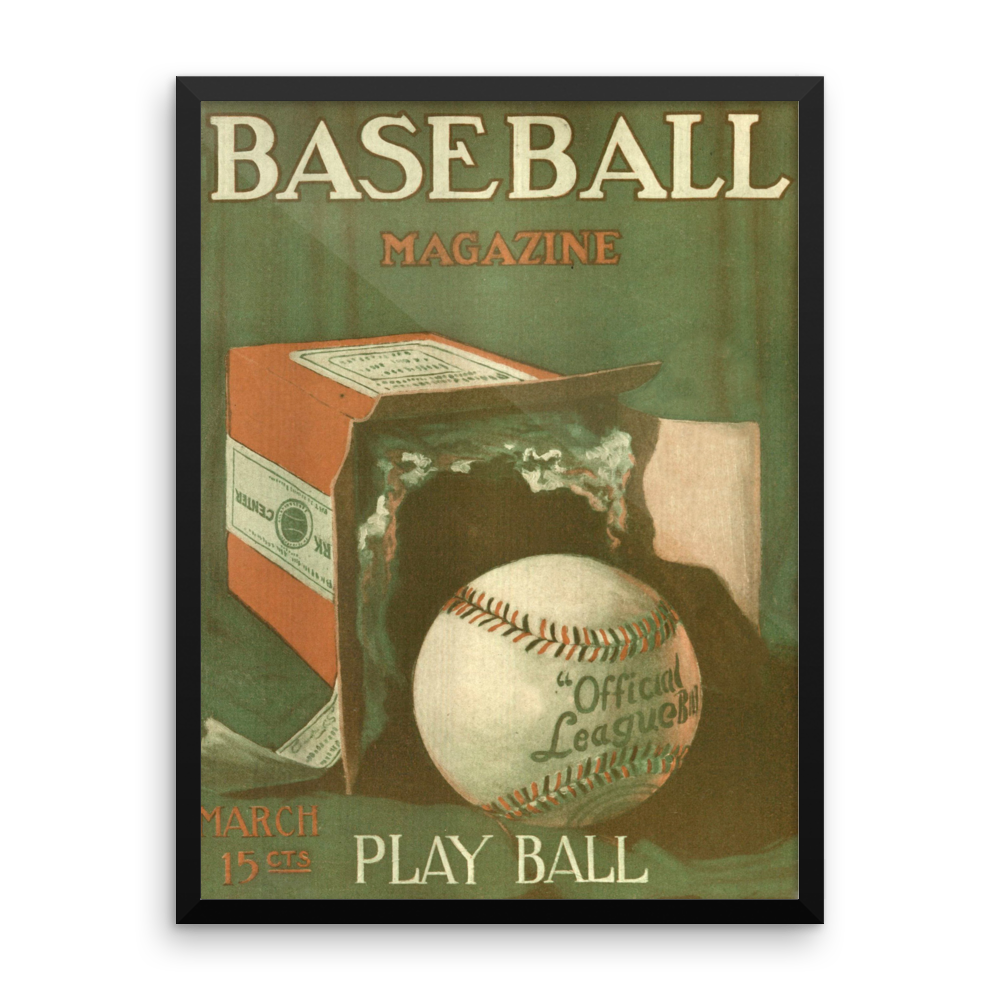 Baseball Play Ball Poster