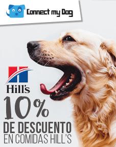 Recibe 10% de descuento en alimentos Hill's para tu perro